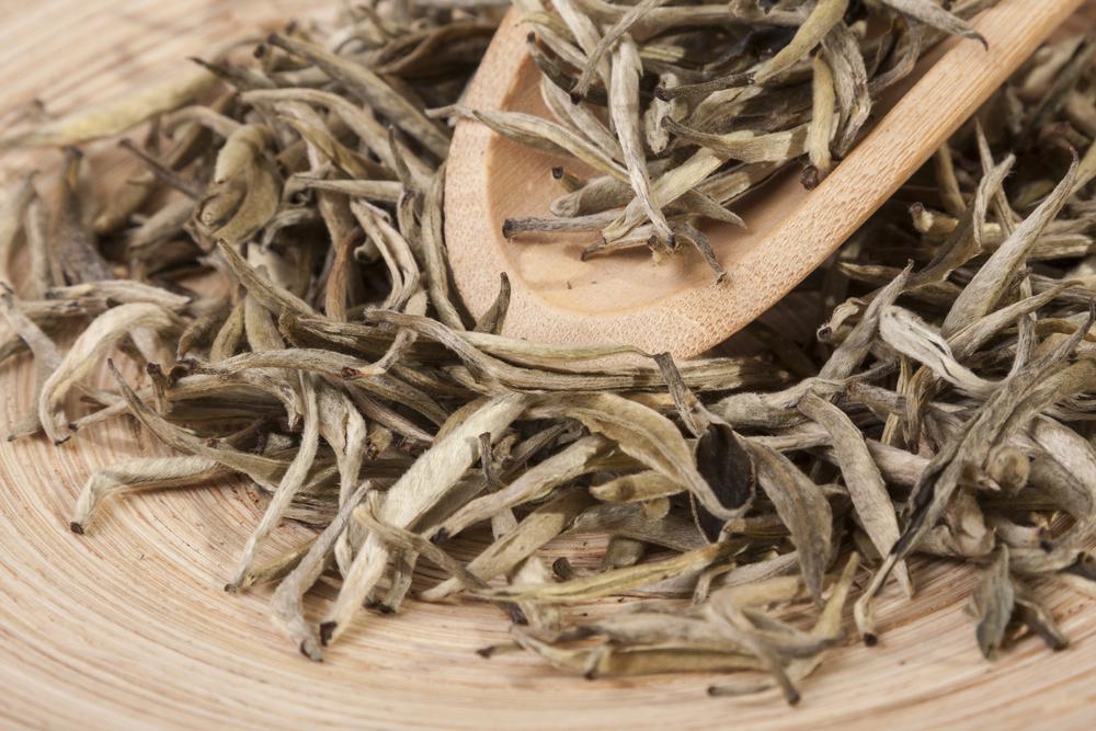 Tè bianco essiccato